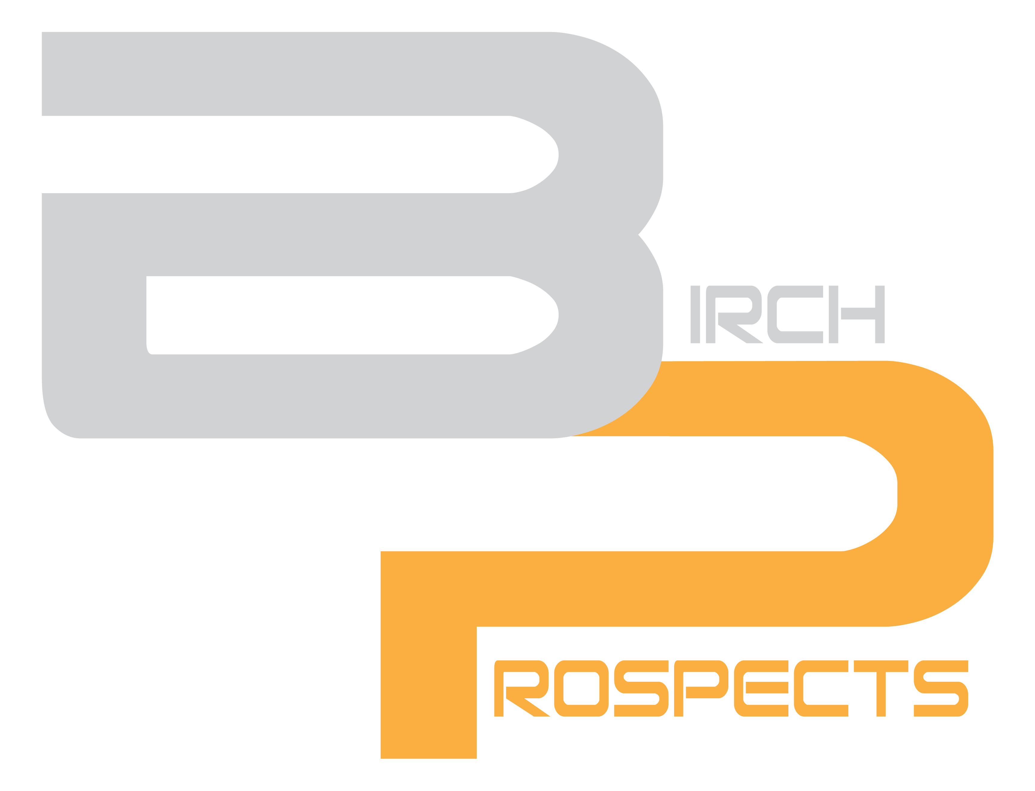 Birch Prospects Logo